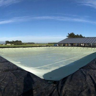 Ecobag New Zealand 2021
